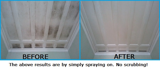 Ceiling Amp Wall Mould Remover Curtain Mould Cleaning Products
